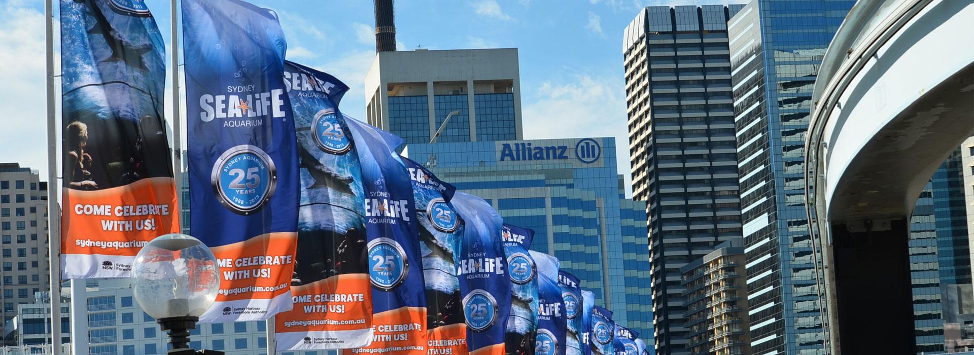 street-flags-banner