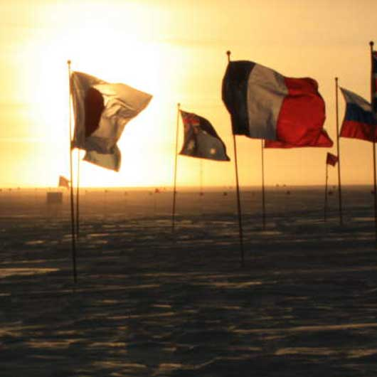 flags-in-sun